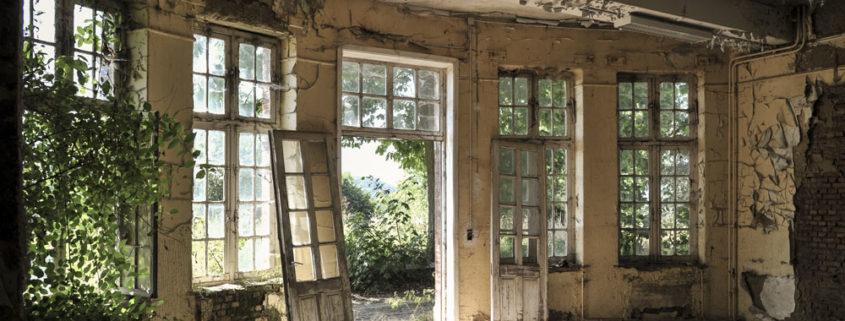 Andre Joosse Garden View