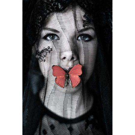 Tanneke Peetoom Butterfly De Molensteen Hoorn